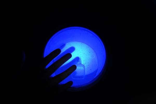 紫光手电筒检测荧光剂