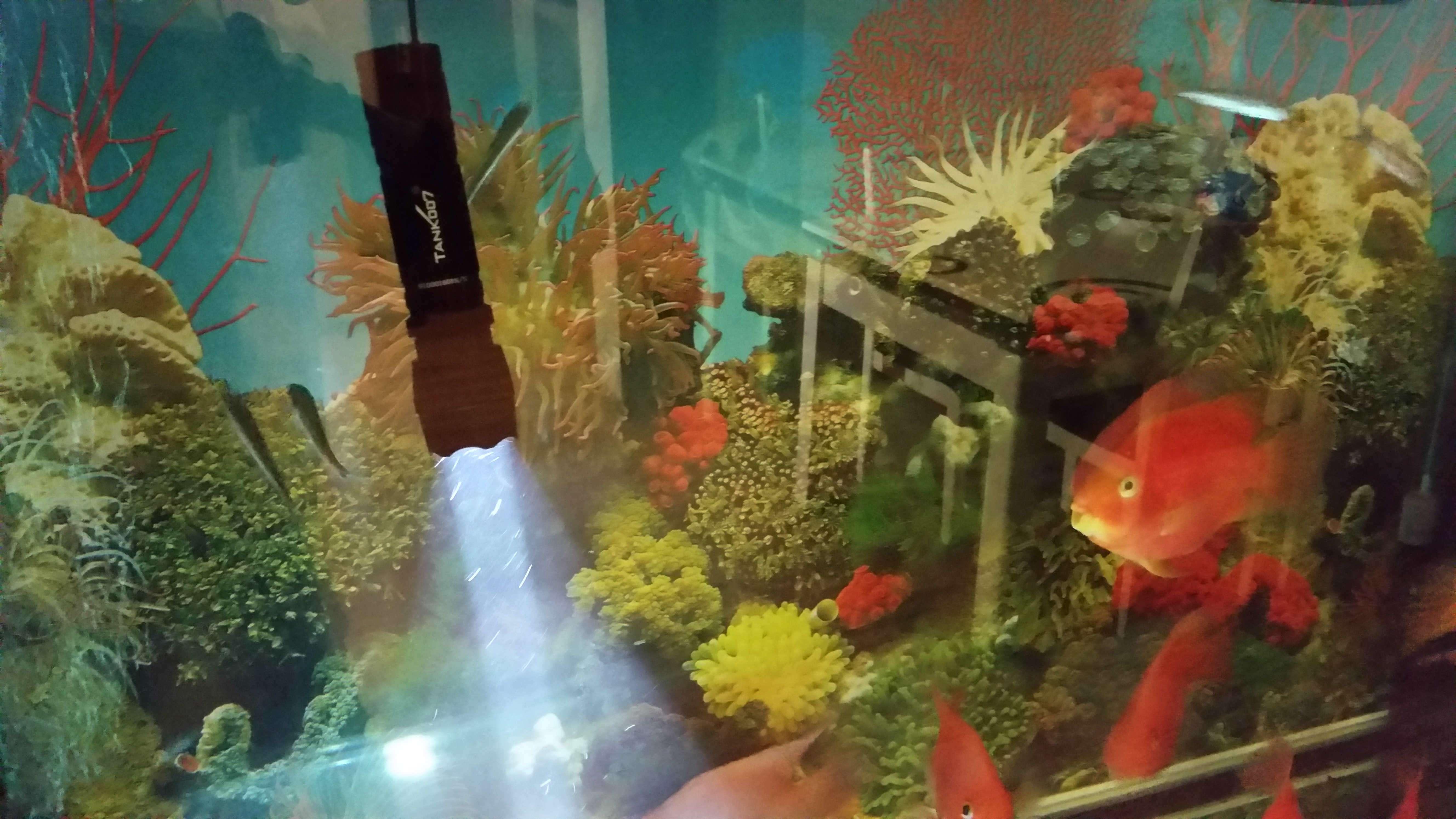 LED手电筒防水测试